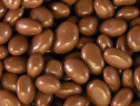 Milk Chocolate Raisins 8 oz. (Kosher Dairy)