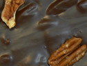 SF Dark Chocolate Cluster Pecans 8 oz.