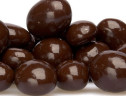 Dark Chocolate Peanuts 1 lb. Kosher Pareve
